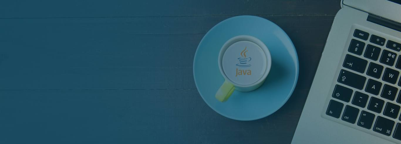 Java Development Company