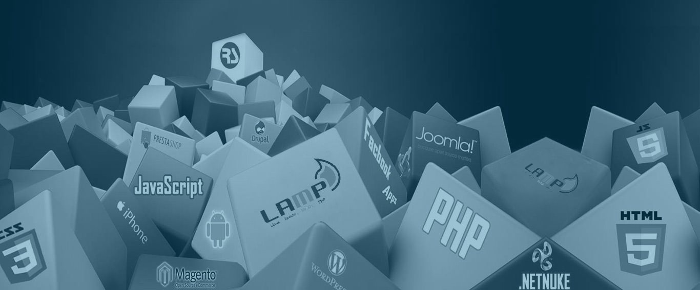 PHP and Python Web Solutions Development Company